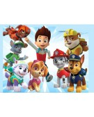 Print Paw Patrol Team Horizontal Rectangular Background CELESTINE